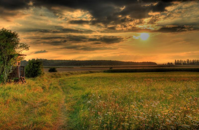 photo of grasslands